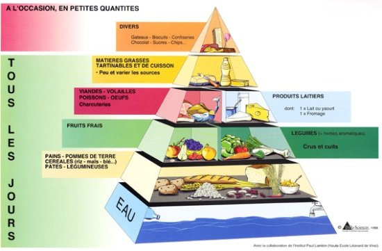food pyramid in french