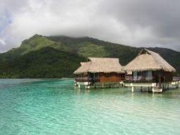 cruises to french polynesia